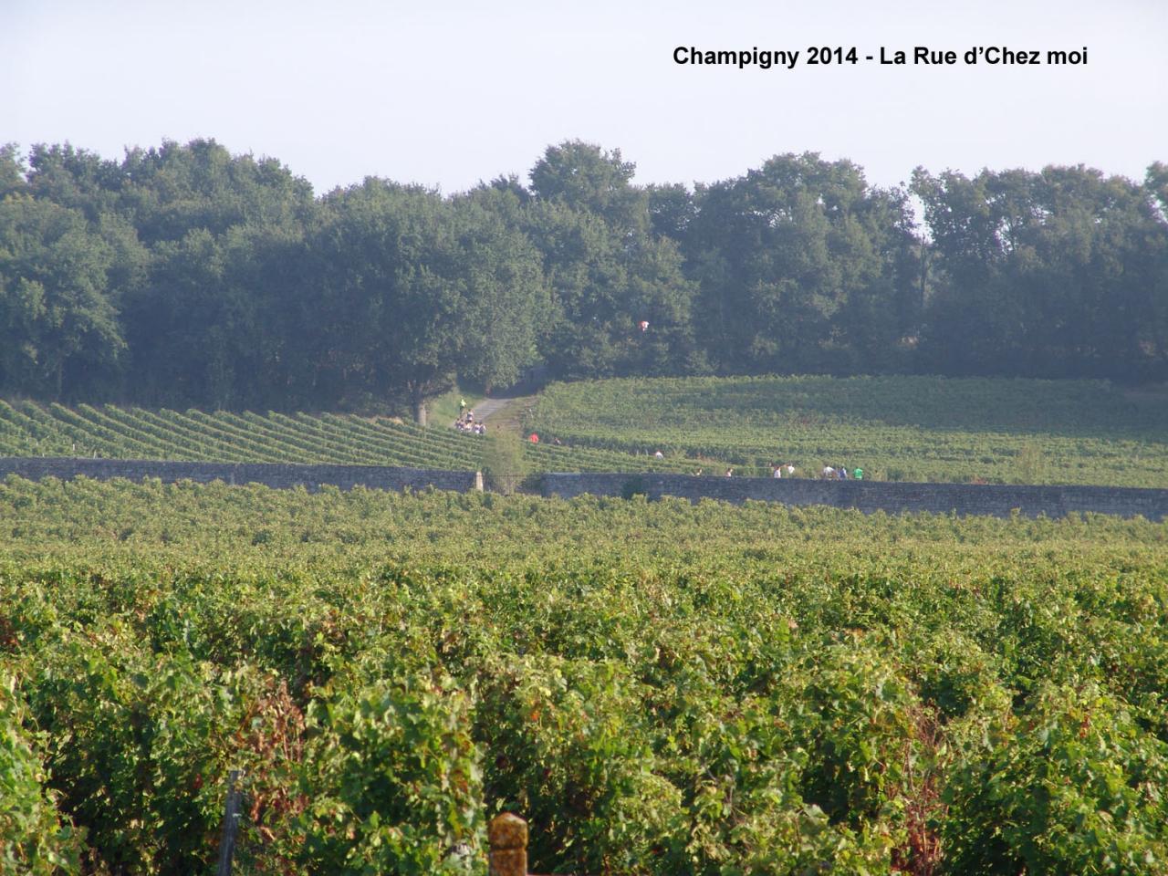 Champigny 2014 - Rue d'Chez Moi (9)